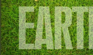 how-to-create-a-grass-covered-text-in-photoshop-step-10