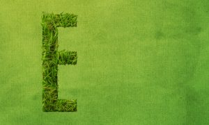 how-to-create-a-grass-covered-text-in-photoshop-step-15
