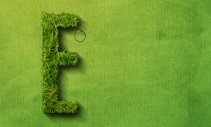 how-to-create-a-grass-covered-text-in-photoshop-step-19