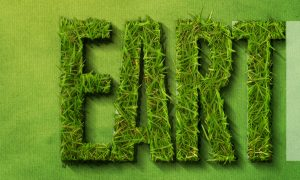how-to-create-a-grass-covered-text-in-photoshop-step-24